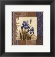 Blue Iris Scroll Framed Print
