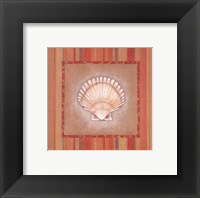 Framed Citrus Shell II