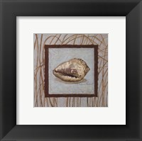 Coastal Escape II Framed Print