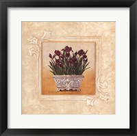 Framed Red Irises
