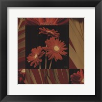 Framed Crimson Gerberas