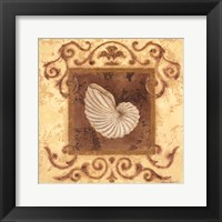 Framed Stylized Shell III