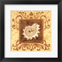 Framed Stylized Shell IV