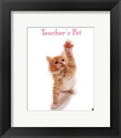 Framed Teacher'S Pet
