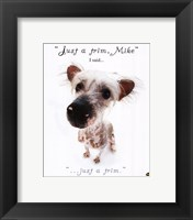 Just A Trim... Framed Print