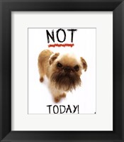 Not Today! Framed Print
