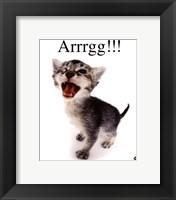 Framed Arrrgg!