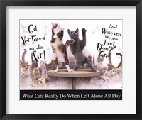 Framed Cat Party