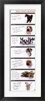 Framed Dog Agenda