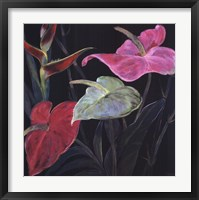 In Bloom II Framed Print