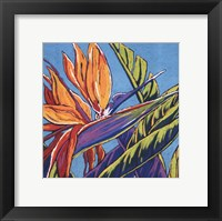Framed Birds of Paradise - Turquoise