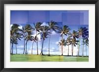 Framed Kauai