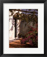 Bougainvillea and Vine Framed Print
