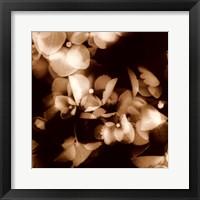 Framed Hydrangeas