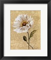 Elegant Poppy Framed Print