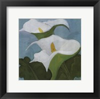 Framed Calla Lillies 5