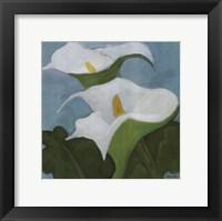 Framed Calla Lillies 5