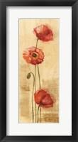 Framed Golden Poppies II