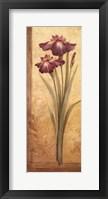Grandiflora I - mini Framed Print