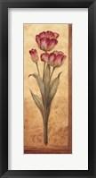 Grandiflora IV - mini Framed Print