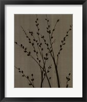 Platinum Shadow II Framed Print
