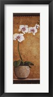 Hanna's Orchids I - mini Framed Print