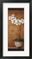 Framed Hanna's Orchids II - mini