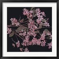 Framed Blossom Branch, 2005