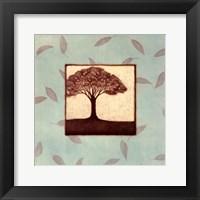 Elm Framed Print