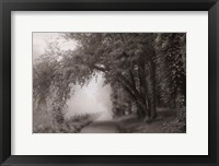 Framed Fog III