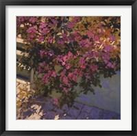 Framed Steps and Summer Flowers