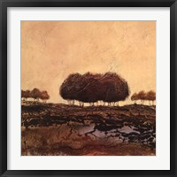 Oak Trees Framed Print