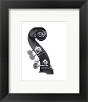 Bass Neck Framed Print