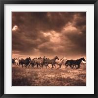 Remuda #6 Framed Print