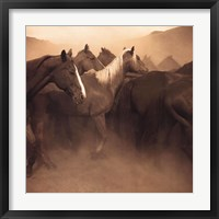 Remuda, Spanish Ranch Framed Print