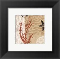 Coral Impressions I Framed Print
