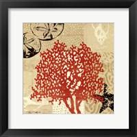 Coral Impressions IV Framed Print