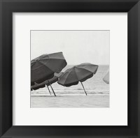 Breeze II Framed Print