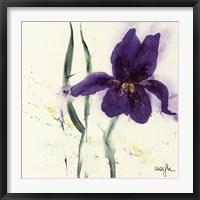 Framed Iris II