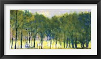 Framed Soft Green Grove