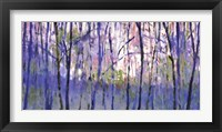 Framed Into  The Woods
