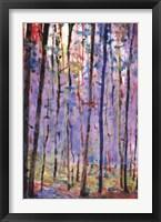 Framed Into Forest