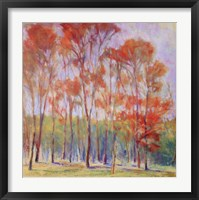 Tree Grouping II Framed Print