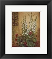 White Gladiolas Framed Print
