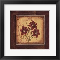 Crimson III Framed Print