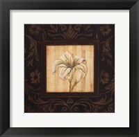 Black Beauty I Framed Print