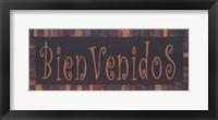 Framed Bienvenidos