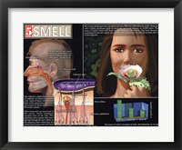 Smell Framed Print