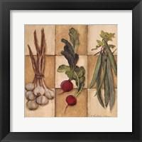 Fresh Veggies II Framed Print