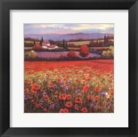 Poppy Pastures I Framed Print